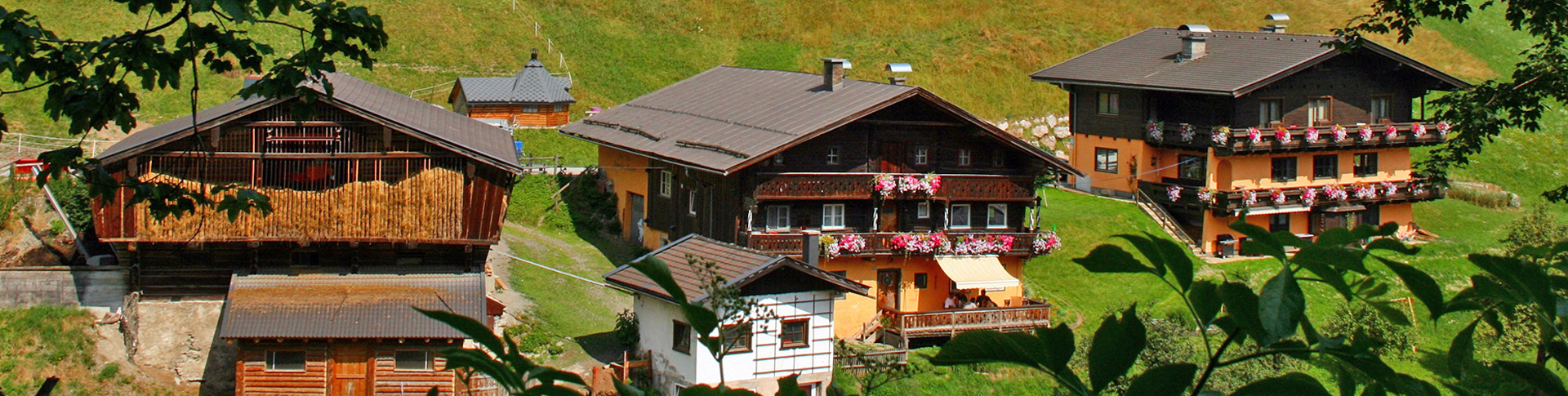 Gstehaus Maria - Bed and breakfasts for Rent in Viehhofen